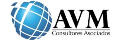 AVM Consultores Chile